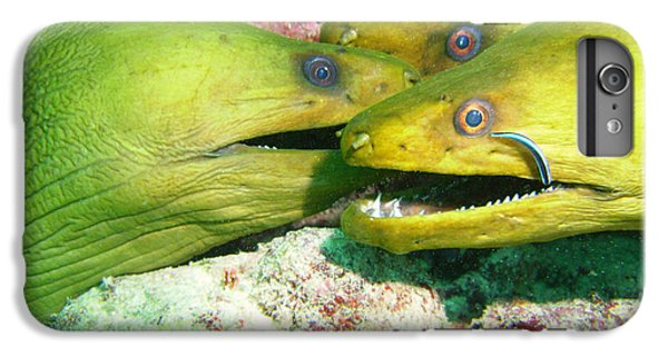 Scuba Diving iPhone 8 Plus Case - Three Eels by Carey Chen
