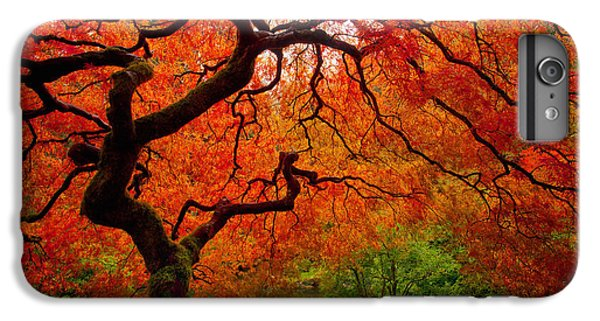 Red iPhone 8 Plus Case - Tree Fire by Darren  White