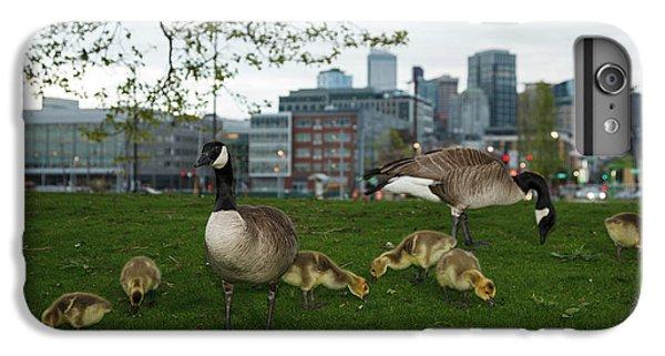 Gosling iPhone 8 Plus Case - Usa, Washington, Seattle, South Lake by Rick A Brown