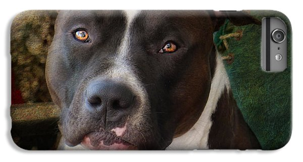 Bull iPhone 8 Plus Case - Sweet Little Pitty by Larry Marshall