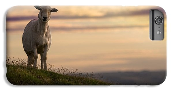 Sheep iPhone 8 Plus Case - On The Top Of The World by Angel Ciesniarska