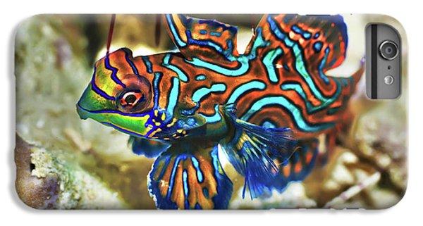 Scuba Diving iPhone 8 Plus Case - Tropical Fish Mandarinfish by MotHaiBaPhoto Prints