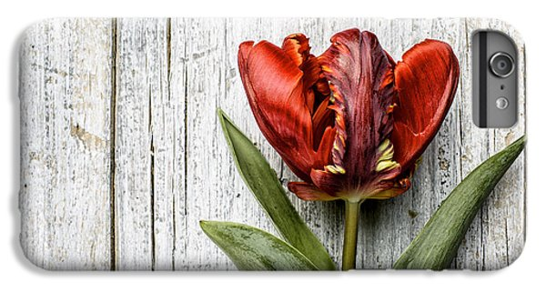 Tulip iPhone 8 Plus Case - Tulip by Nailia Schwarz