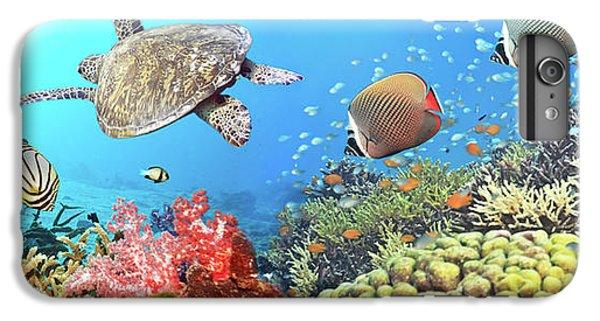 Scuba Diving iPhone 8 Plus Case - Underwater Panorama by MotHaiBaPhoto Prints