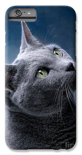 Cat iPhone 8 Plus Case - Russian Blue Cat by Nailia Schwarz