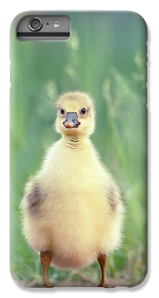 Gosling iPhone 8 Plus Case - Brave New Baby - Gosling Ready To Conquer The World by Roeselien Raimond