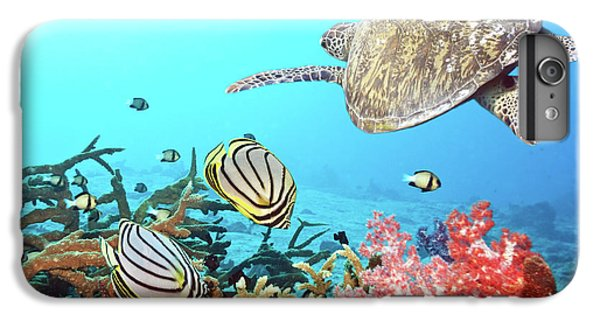 Scuba Diving iPhone 8 Plus Case - Butterflyfishes And Turtle by MotHaiBaPhoto Prints