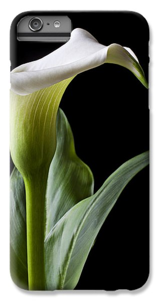 Lily iPhone 8 Plus Case - Calla Lily With Drip by Garry Gay