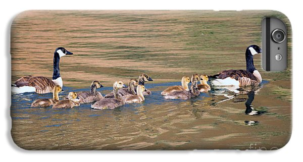 Gosling iPhone 8 Plus Case - Canada Goose Family by Mike Dawson