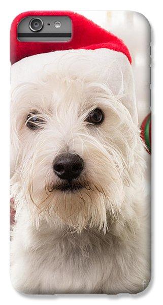 Elf iPhone 8 Plus Case - Christmas Elf Dog by Edward Fielding