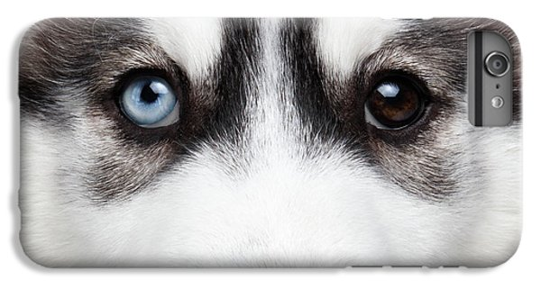 Dog iPhone 8 Plus Case - Closeup Siberian Husky Puppy Different Eyes by Sergey Taran