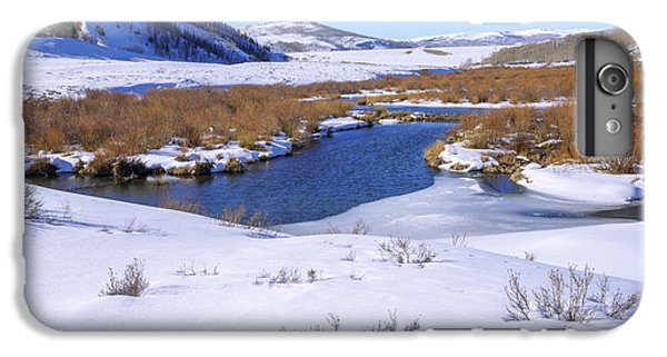 Shrub iPhone 8 Plus Case - Currant Creek On Ice by Chad Dutson