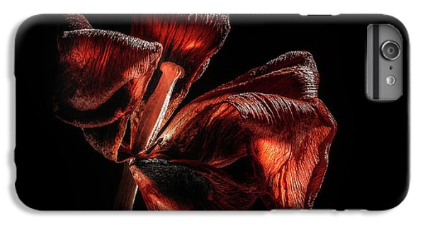 Tulip iPhone 8 Plus Case - Dried Tulip Blossom by Scott Norris