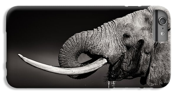 Bull iPhone 8 Plus Case - Elephant Bull Drinking Water - Duetone by Johan Swanepoel