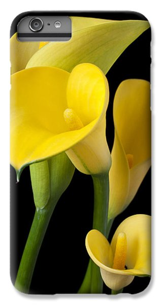 Lily iPhone 8 Plus Case - Four Yellow Calla Lilies by Garry Gay