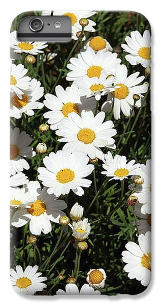 Daisy iPhone 8 Plus Case - Happy Daisies- Photography By Linda Woods by Linda Woods