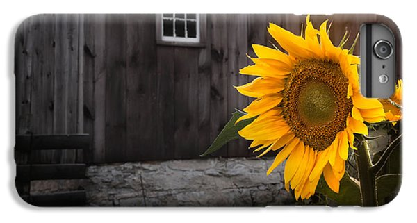 New England Barn iPhone 8 Plus Case - In The Light by Bill Wakeley