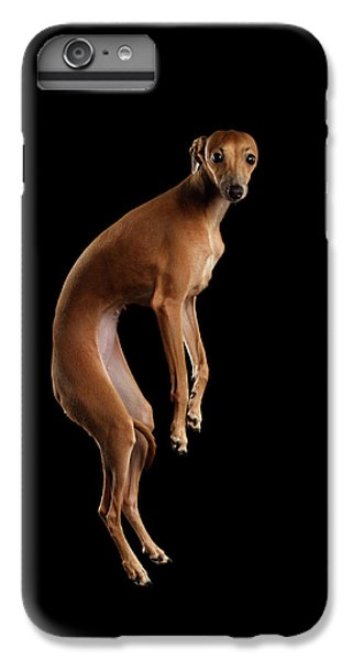 Dog iPhone 8 Plus Case - Italian Greyhound Dog Jumping, Hangs In Air, Looking Camera Isolated by Sergey Taran