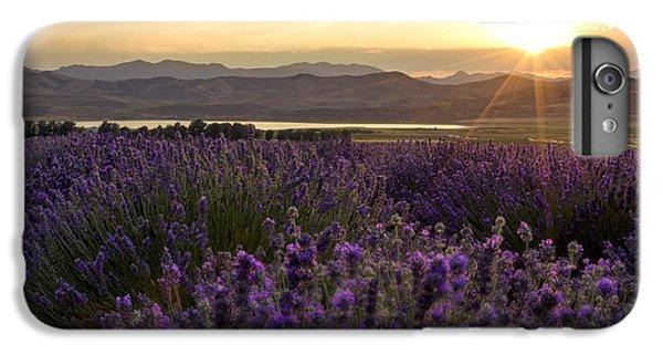 Shrub iPhone 8 Plus Case - Lavender Glow by Chad Dutson