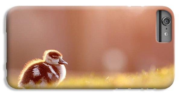 Gosling iPhone 8 Plus Case - Little Furry Animal - Gosling In Warm Light by Roeselien Raimond