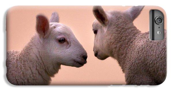 Sheep iPhone 8 Plus Case - Little Gossips by Angel Ciesniarska