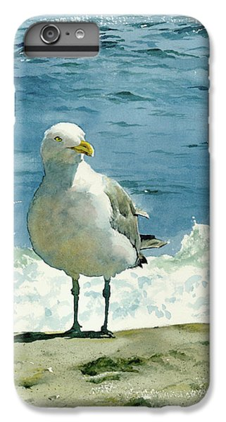 Beach iPhone 8 Plus Case - Montauk Gull by Tom Hedderich