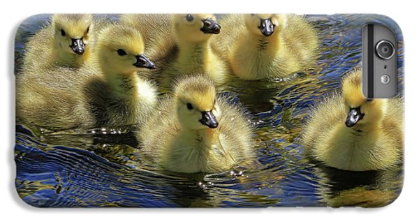 Gosling iPhone 8 Plus Case - Precious Goslings by Donna Kennedy