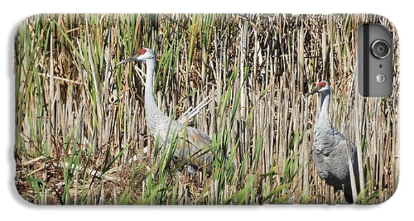 iPhone 8 Plus Case - Sandhill Crane by Red Cross