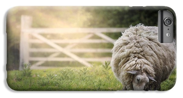 Sheep iPhone 8 Plus Case - Sheep by Joana Kruse
