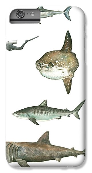 Scuba Diving iPhone 8 Plus Case - Sharks And Mola Mola by Juan Bosco