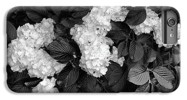Shrub iPhone 8 Plus Case - Snowball Bush by Tom Mc Nemar