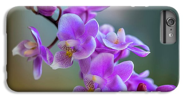 Orchid iPhone 8 Plus Case - Spring For You by Marvin Spates