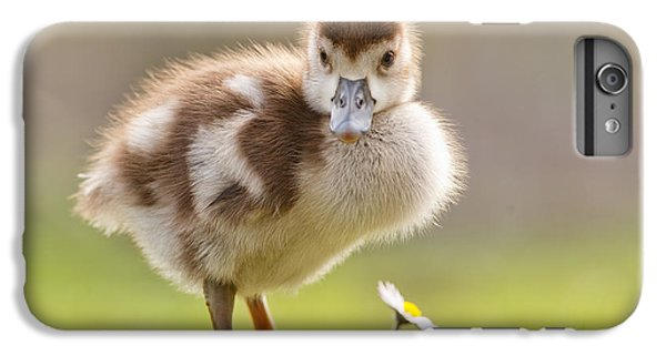 Gosling iPhone 8 Plus Case - The Gosling And The Flower by Roeselien Raimond