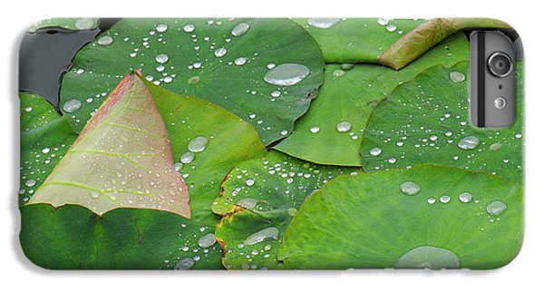 Lily iPhone 8 Plus Case - Waterdrops On Lotus Leaves by Silke Magino