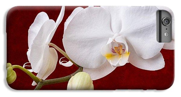 Orchid iPhone 8 Plus Case - White Orchid Closeup by Tom Mc Nemar