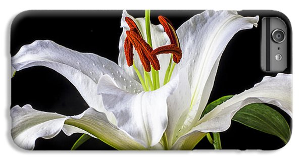 Lily iPhone 8 Plus Case - White Tiger Lily Still Life by Garry Gay