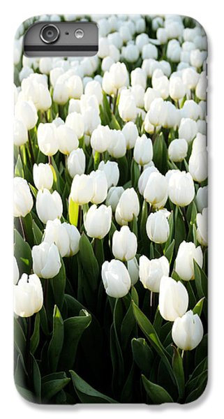 Tulip iPhone 8 Plus Case - White Tulips In The Garden by Linda Woods