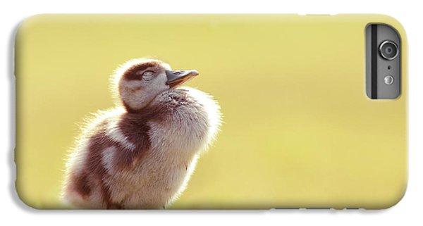 Gosling iPhone 8 Plus Case - Zen Bird - Gosling Enjoying The Sun Light by Roeselien Raimond