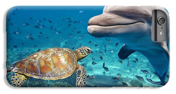 Scuba Diving iPhone 8 Plus Case - Dolphin And Turtle Underwater On Reef by Andrea Izzotti