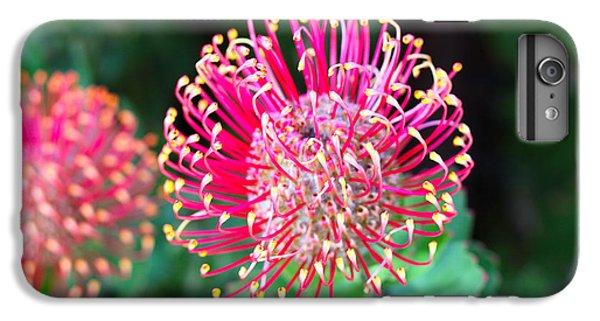 Shrub iPhone 8 Plus Case - Flowerhead Of A Hakea - Australian by Cloudia Spinner