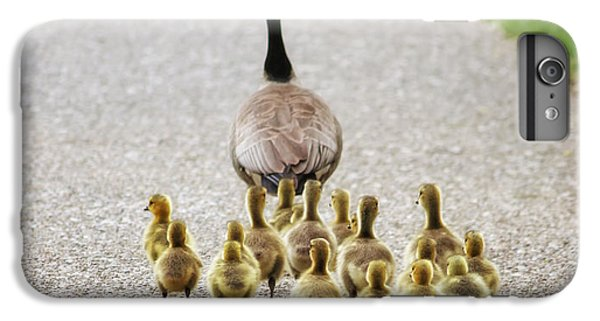Gosling iPhone 8 Plus Case - Shallow Dof On Babies A Cute Family Of by Annette Shaff