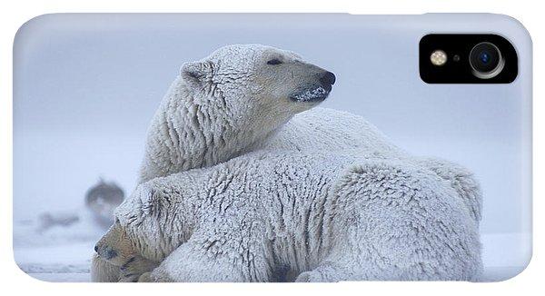 Winter iPhone XR Case - Polar Bear Sow With Cub Resting by Steven Kazlowski