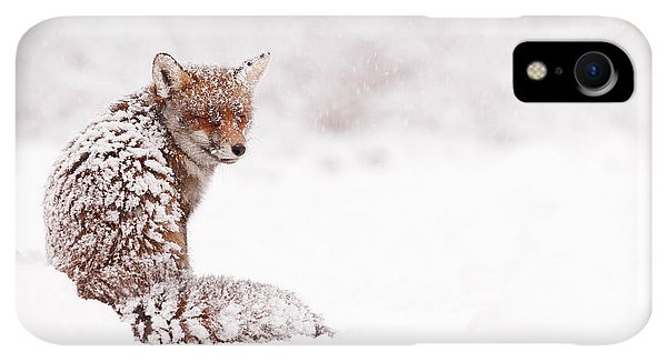 Winter iPhone XR Case - A Red Fox Fantasy by Roeselien Raimond