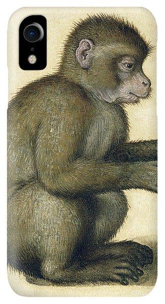 Albrecht Durer iPhone XR Case - A Monkey by Albrecht Durer