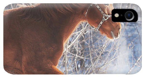 Winter iPhone XR Case - Cold by Carrie Ann Grippo-Pike