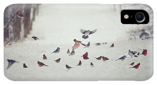 Winter iPhone XR Case - Feathered Friends by Carrie Ann Grippo-Pike