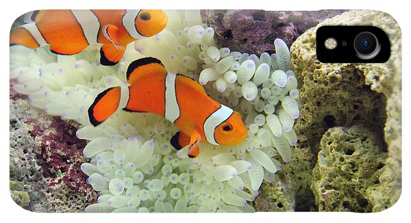 Scuba Diving iPhone XR Case - Nemo by Carey Chen