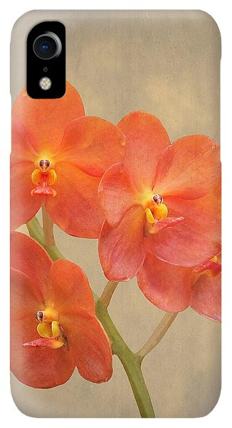 Scarlet iPhone XR Case - Red Scarlet Orchid On Grunge by Rudy Umans