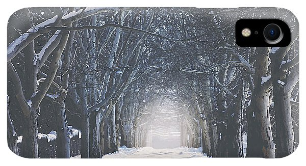 Winter iPhone XR Case - Winter Road by Carrie Ann Grippo-Pike