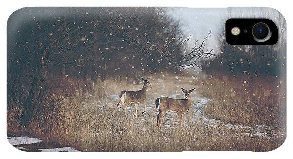 Winter iPhone XR Case - Winter Wonders by Carrie Ann Grippo-Pike